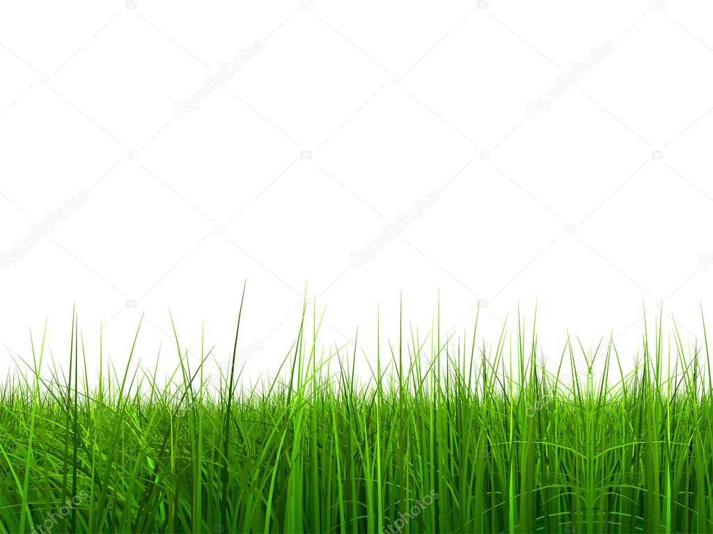 natural 3d grass field