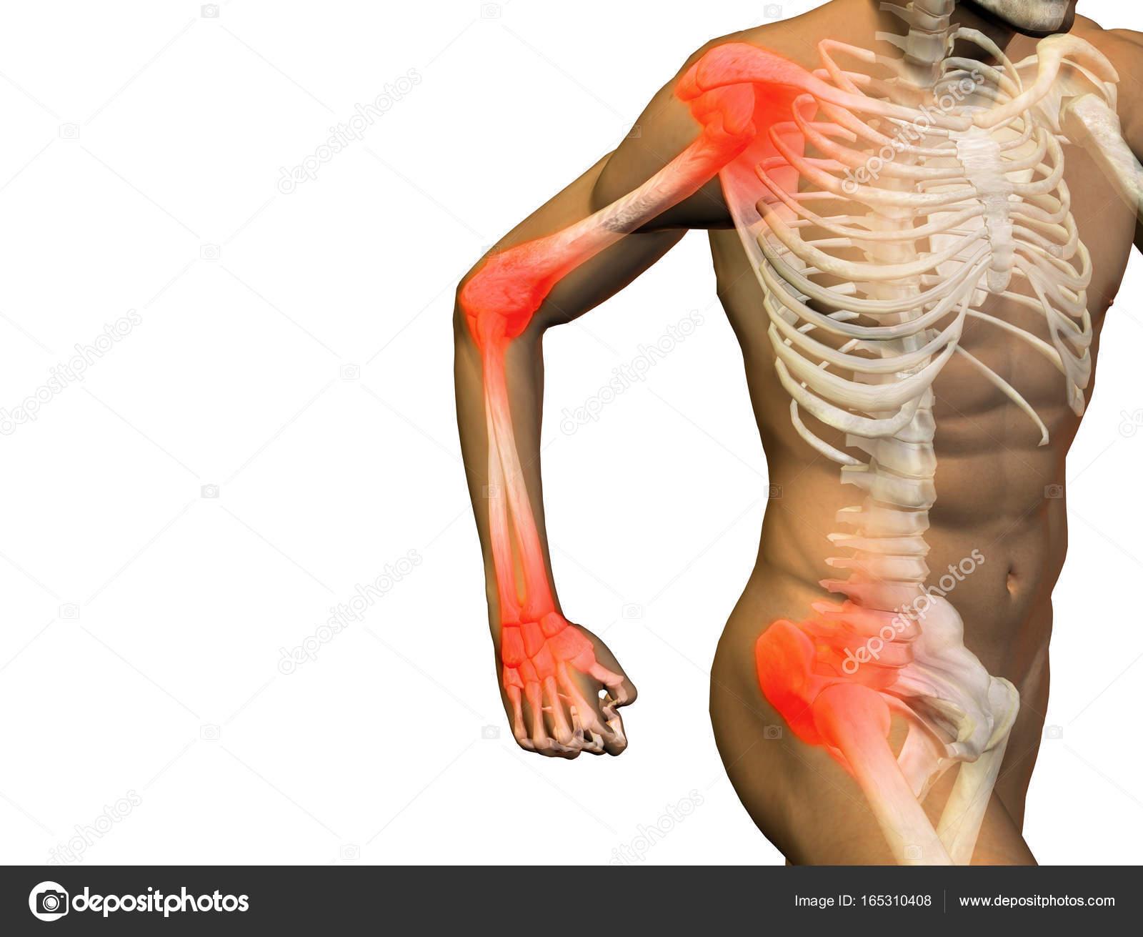 Konzeptionelle Abbildung Mensch Anatomie Gesundheit 3D-Design ...