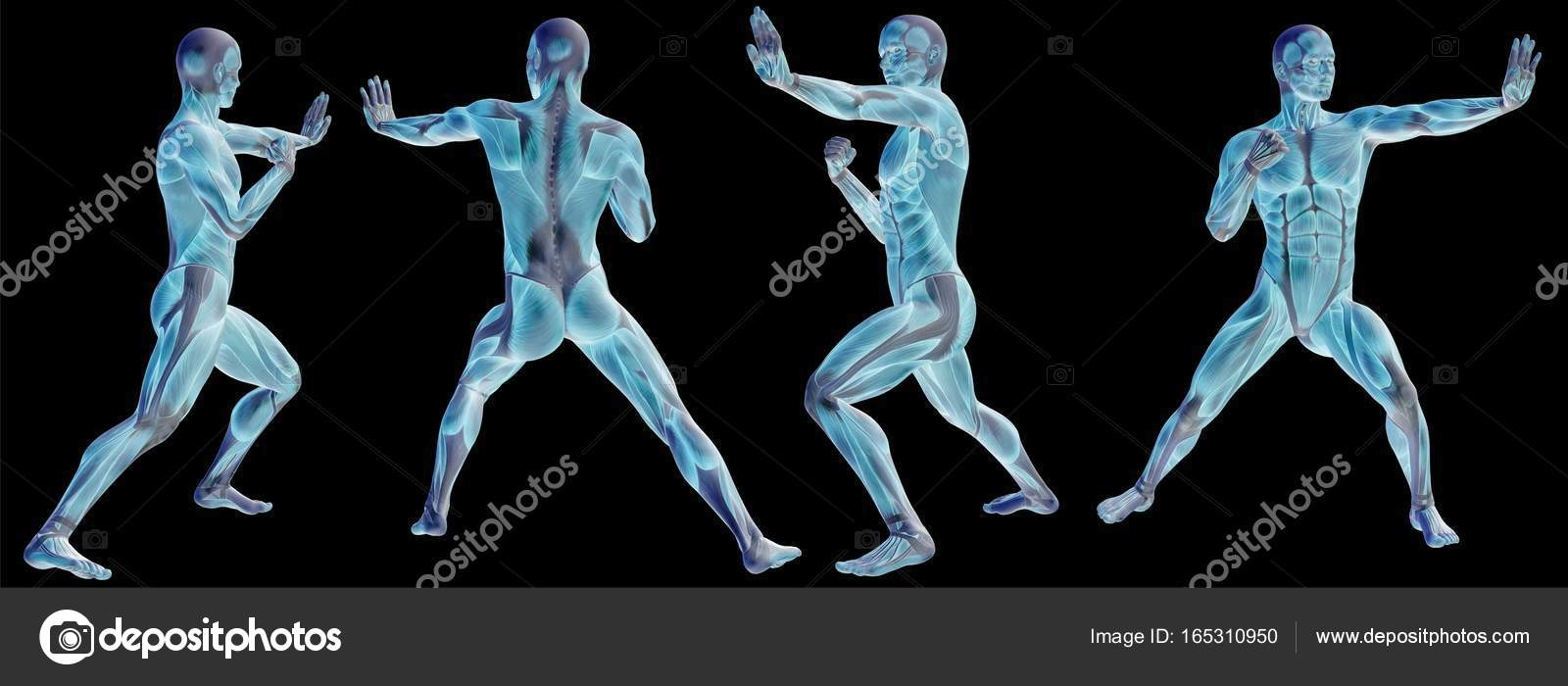 High Resolution Concept Conceptual Human Or Man 3d Anatomy Body With