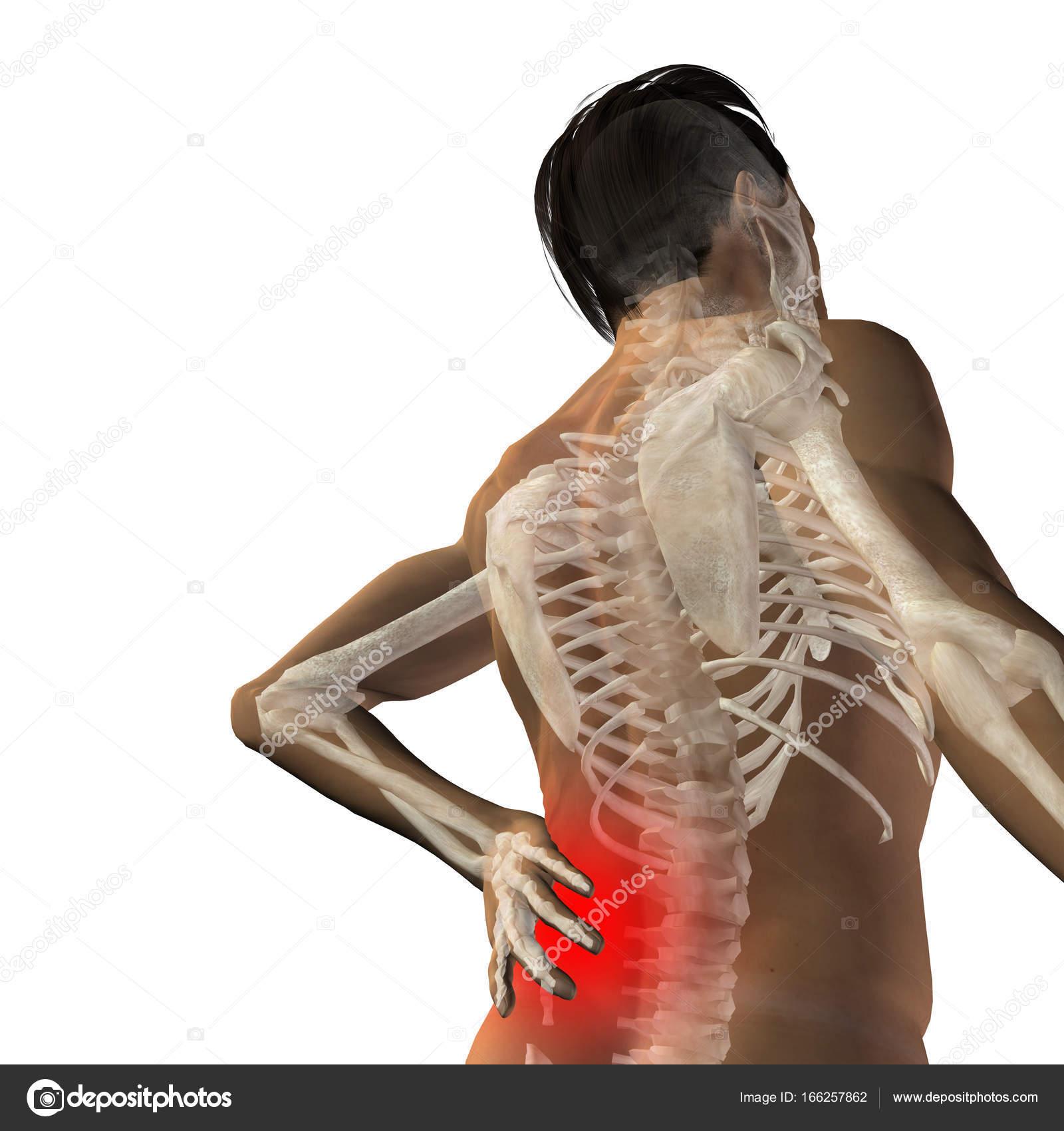 man anatomy with back pain — Stock Photo © design36 #166257862