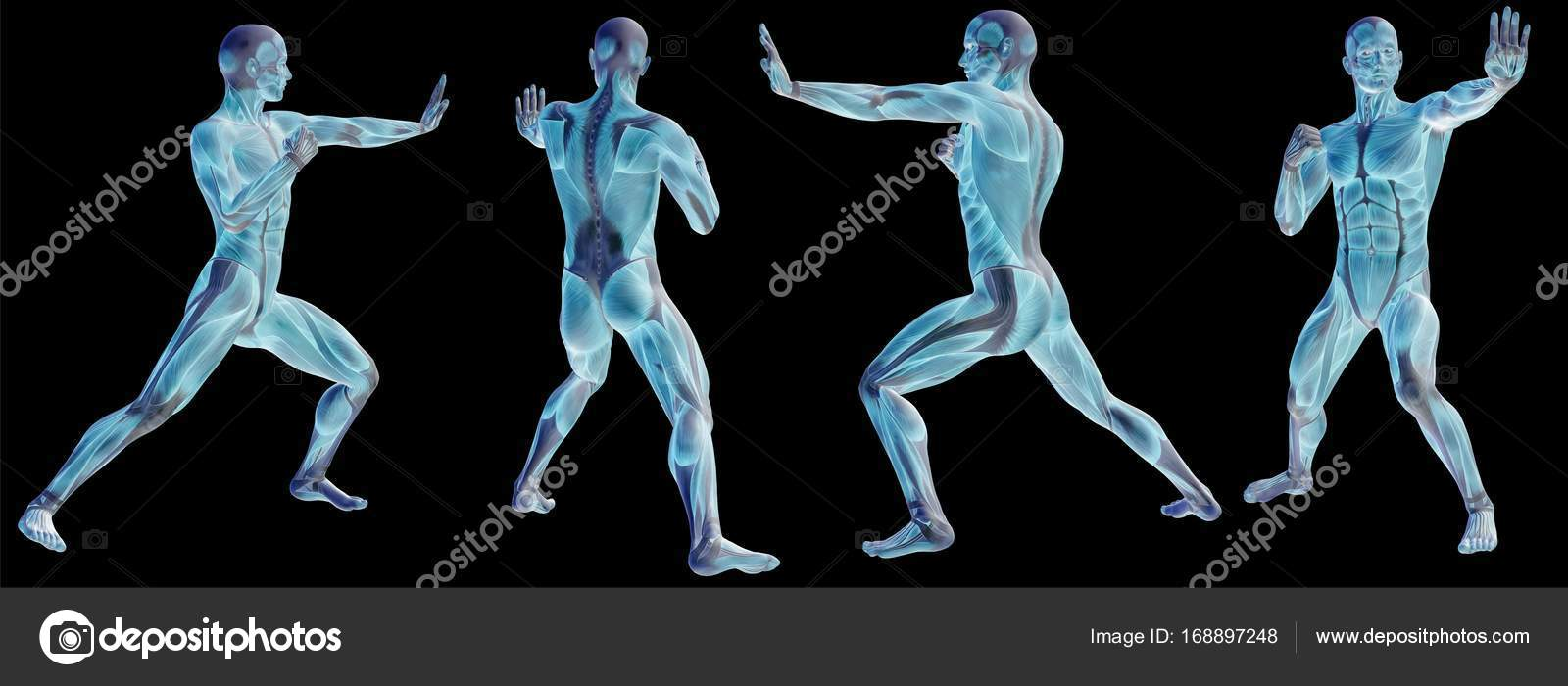 Concept Or Conceptual Human Or Man 3d Anatomy Body With Muscle