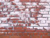 červená cihlová zeď s barvy