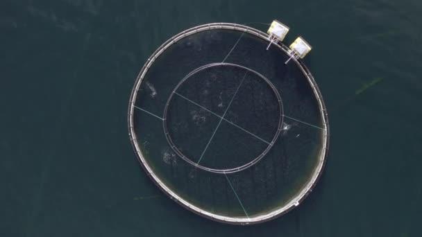 Madártávlat egy akvakultúra-halgazdaságból