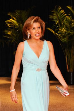TV Host Hoda Kotb