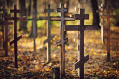 Old orthodox cemetery, wooden crosses in sunlight, shallow dof stock vector