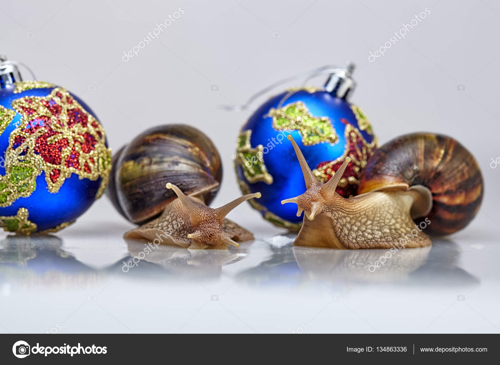 Snails and a christmas-tree decoration — Stock Photo ...