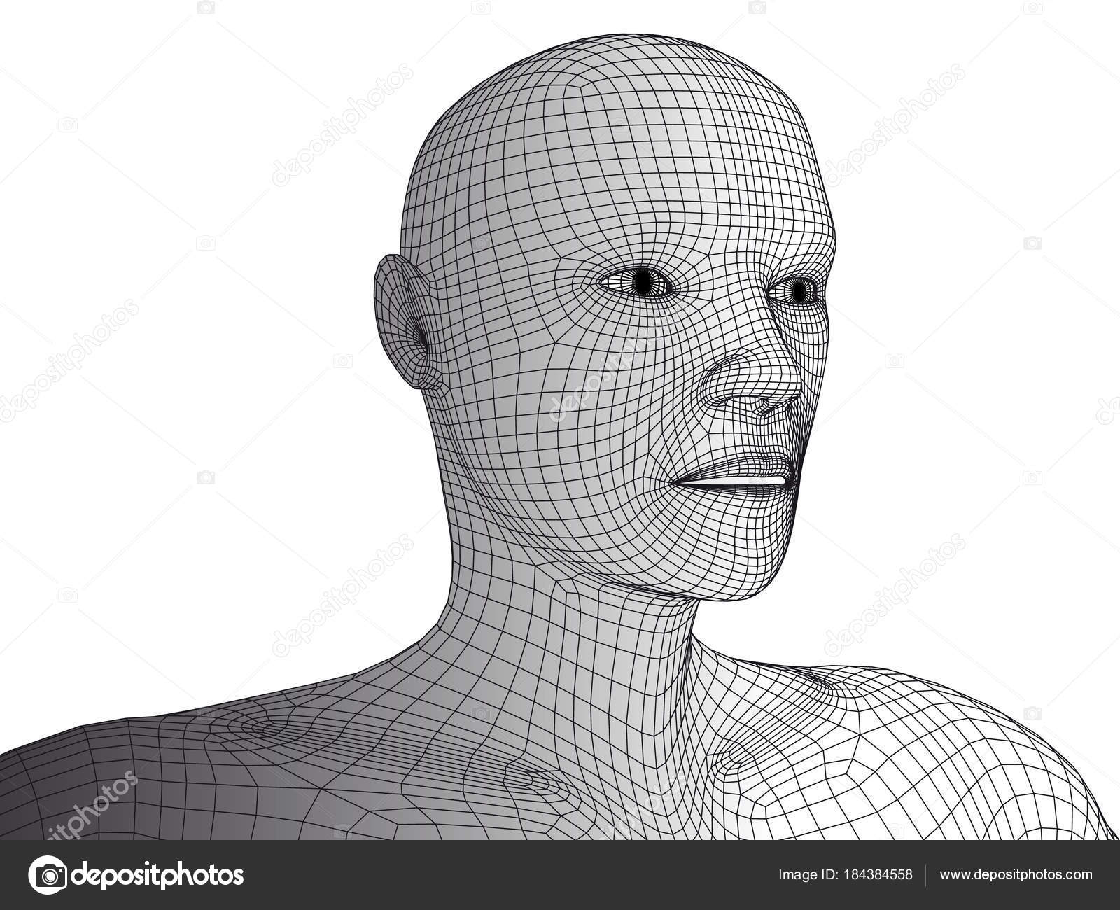 Human head 3d wireframe vector isolated. — Stock Vector © anastad ...