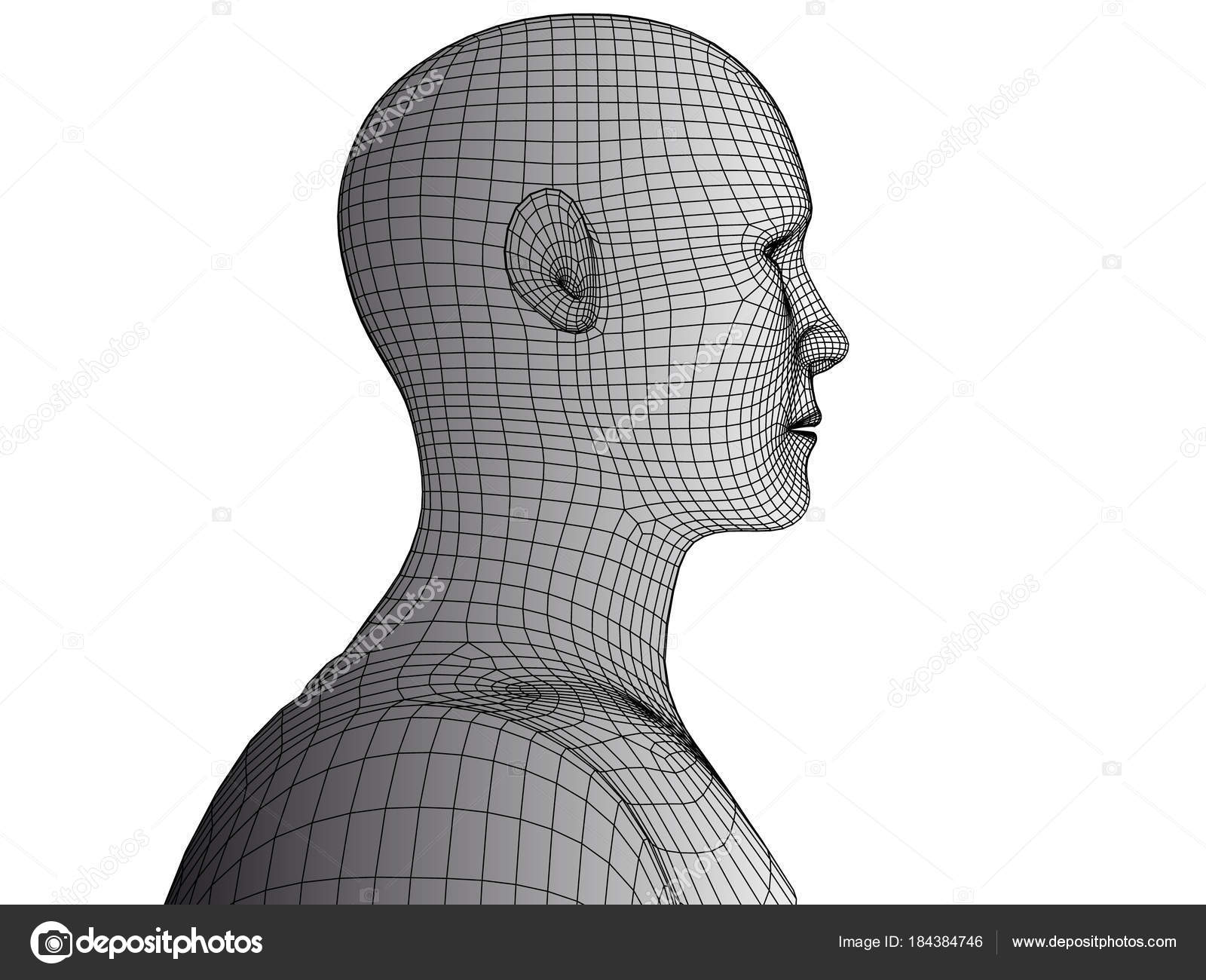 Abstract human head 3d wireframe vector. — Stock Vector © anastad ...