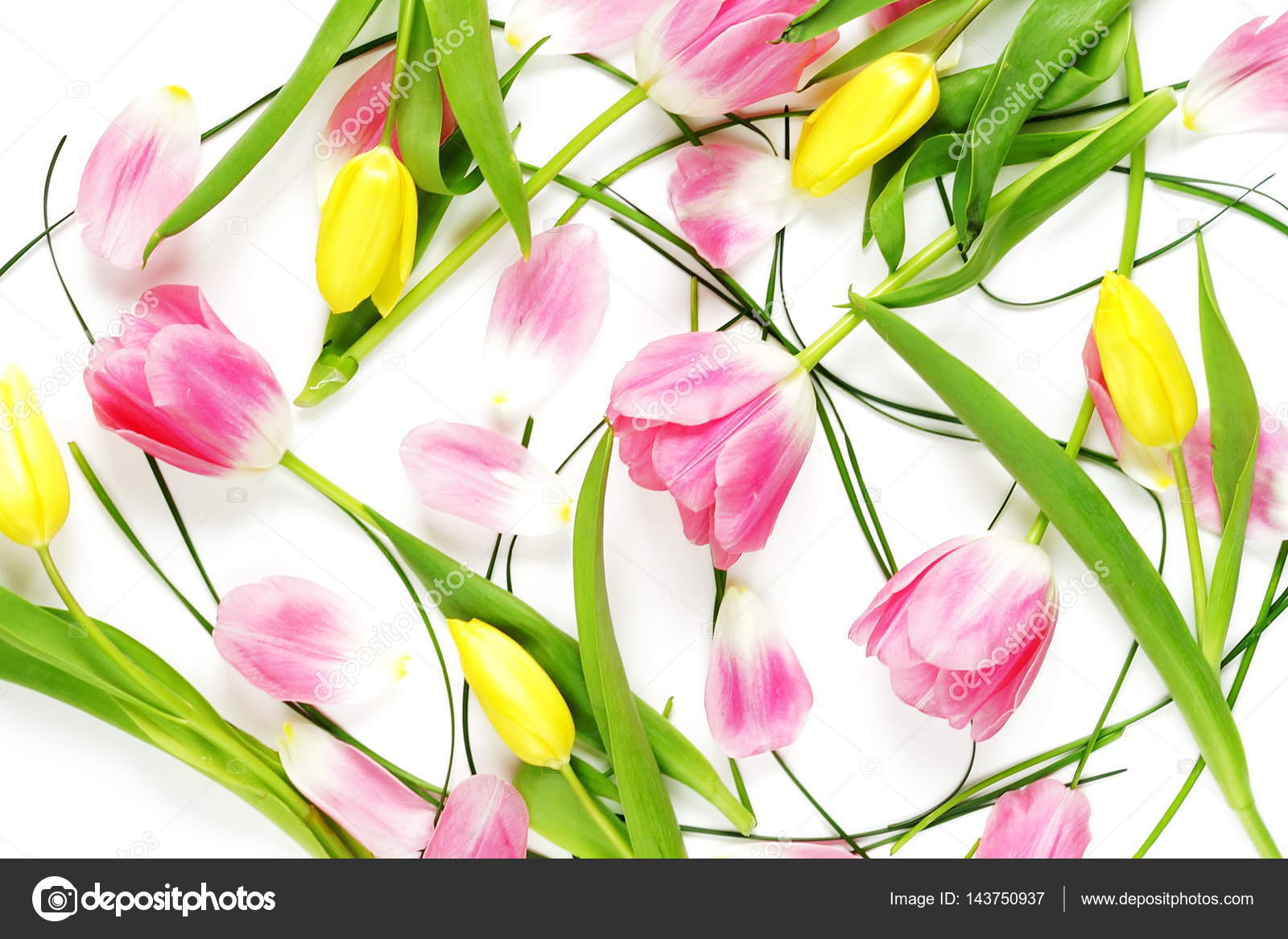 Floral Pattern Made Of Pink And Yellow Tulips Green Leaves On White