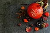 Fotografie podzimní příroda sklizeň dekorace