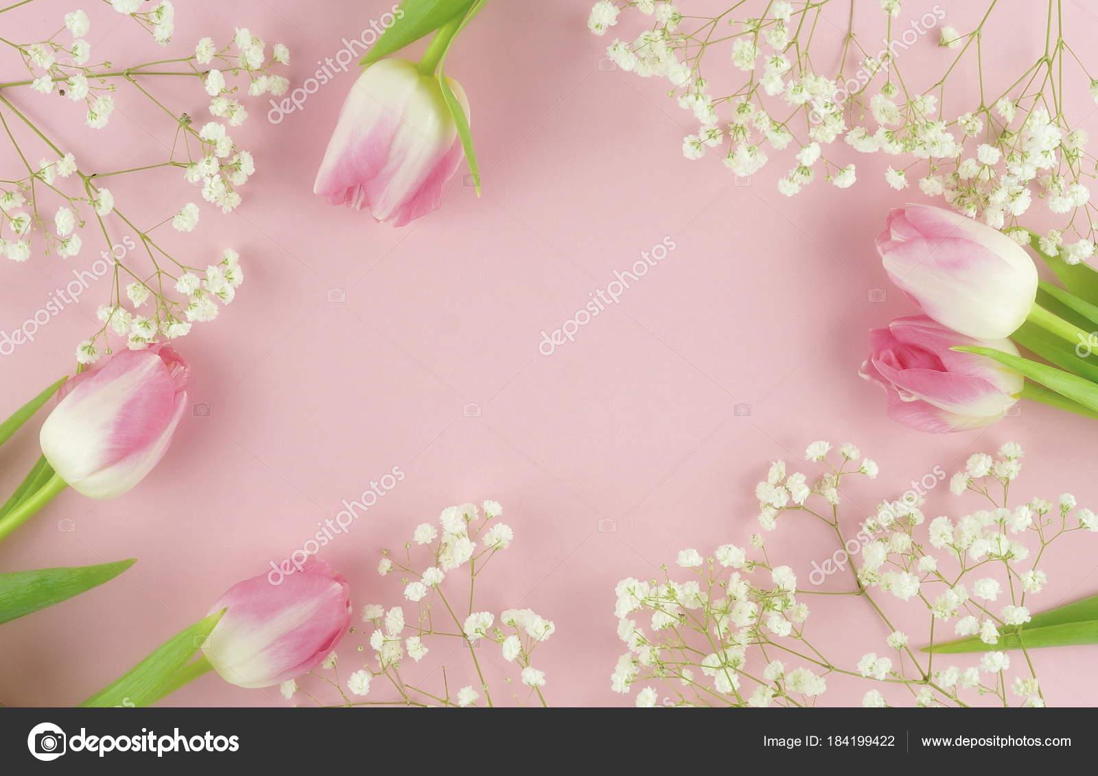 Flower Frame Arrangement Pink Tulips White Flowers Pale Pink