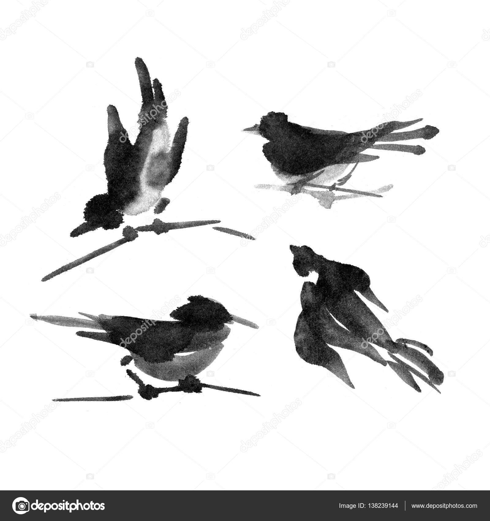 Colección de tinta sumi-e de aves. Pintura de la acuarela — Fotos de ...
