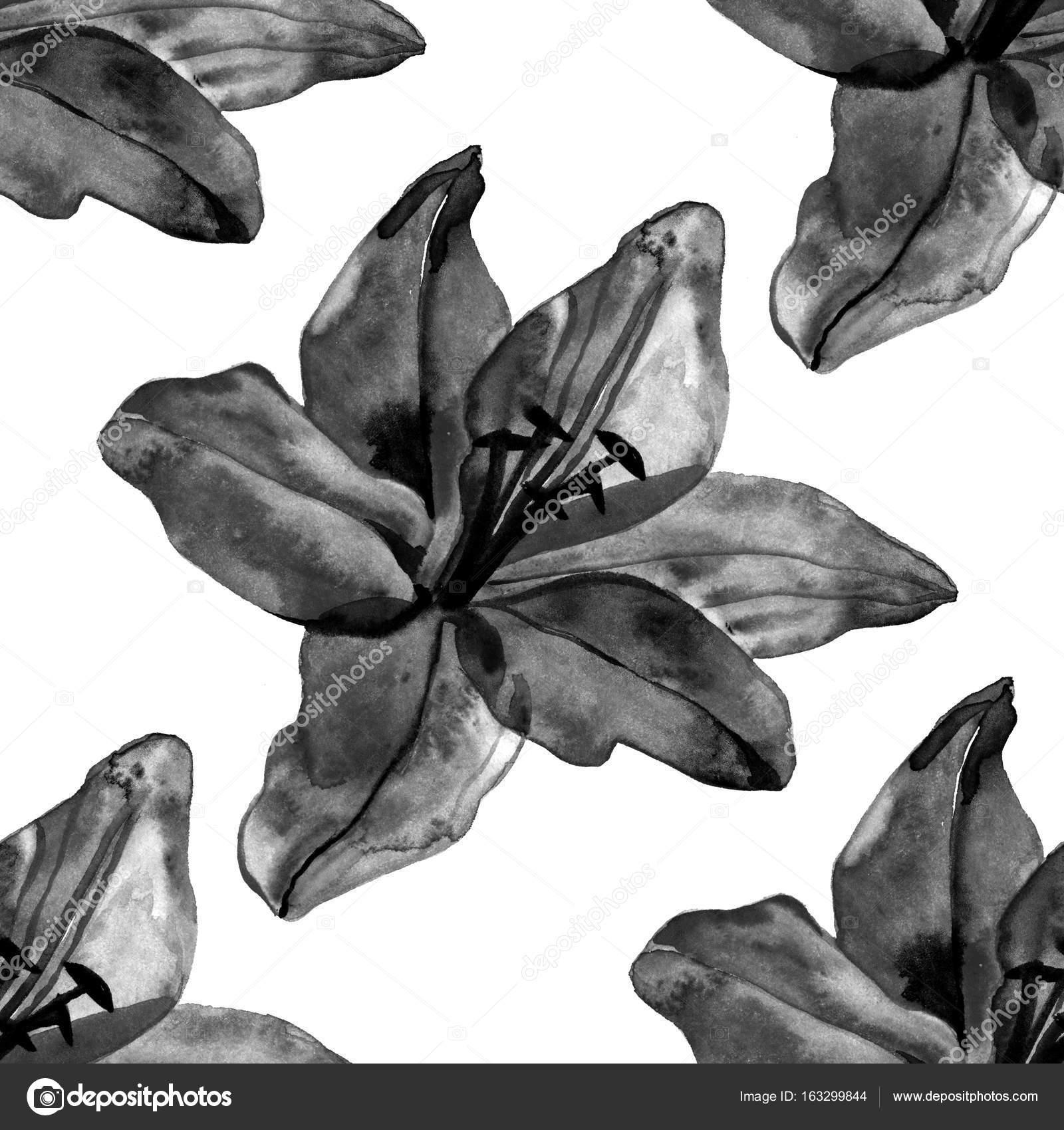 Beautiful Black Lilies Flowers Seamless Pattern On White Background