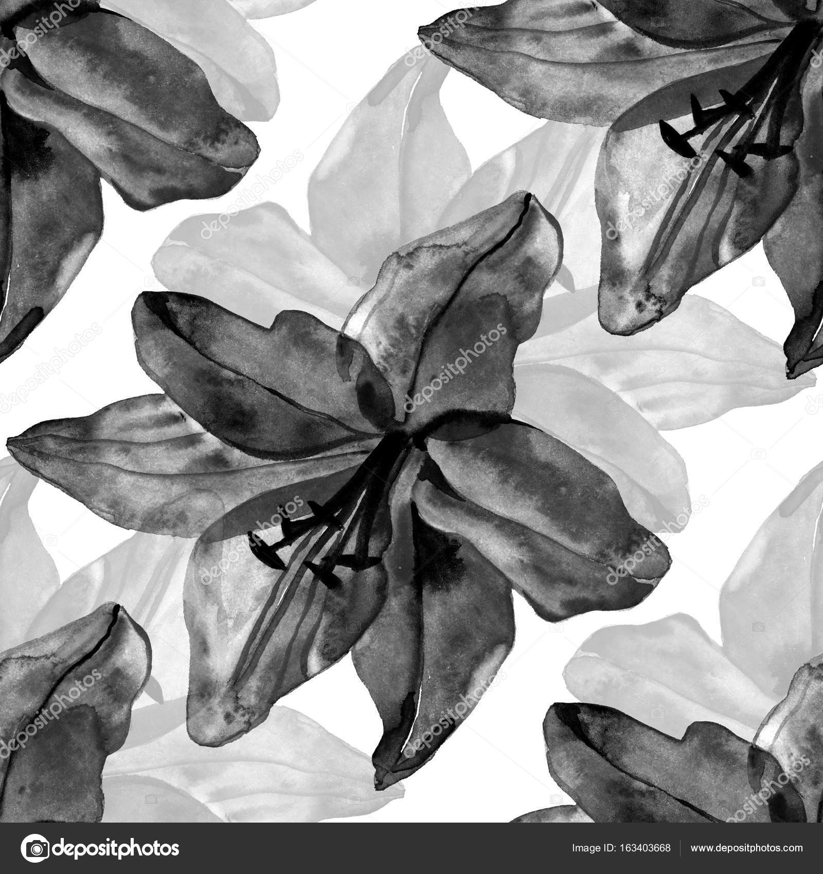 Beautiful black lilies flowers seamless pattern on white background beautiful black lilies flowers seamless pattern on white background illustration photo by 7slonov izmirmasajfo