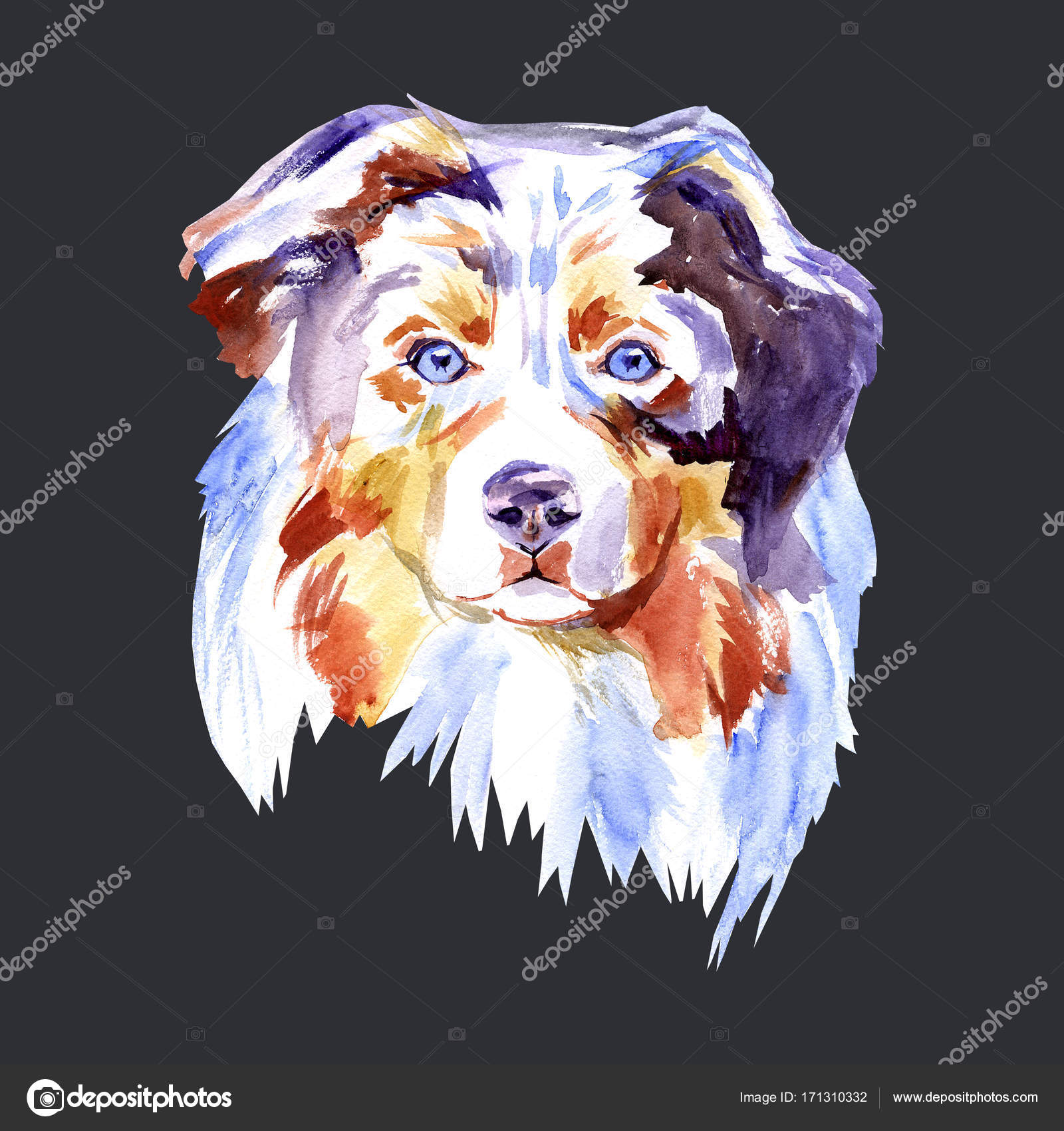 Watercolor paintings of dogs   Drawing Dog breed ...