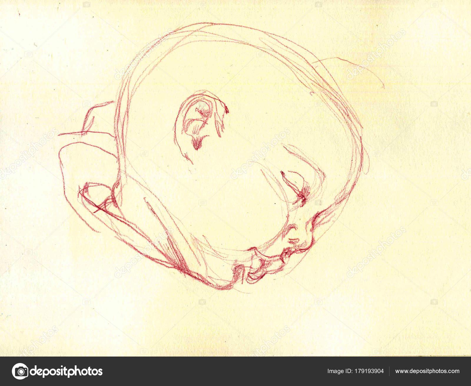 Cute Simple Line Art : Cute sleeping baby drawing simple illustration u stock photo