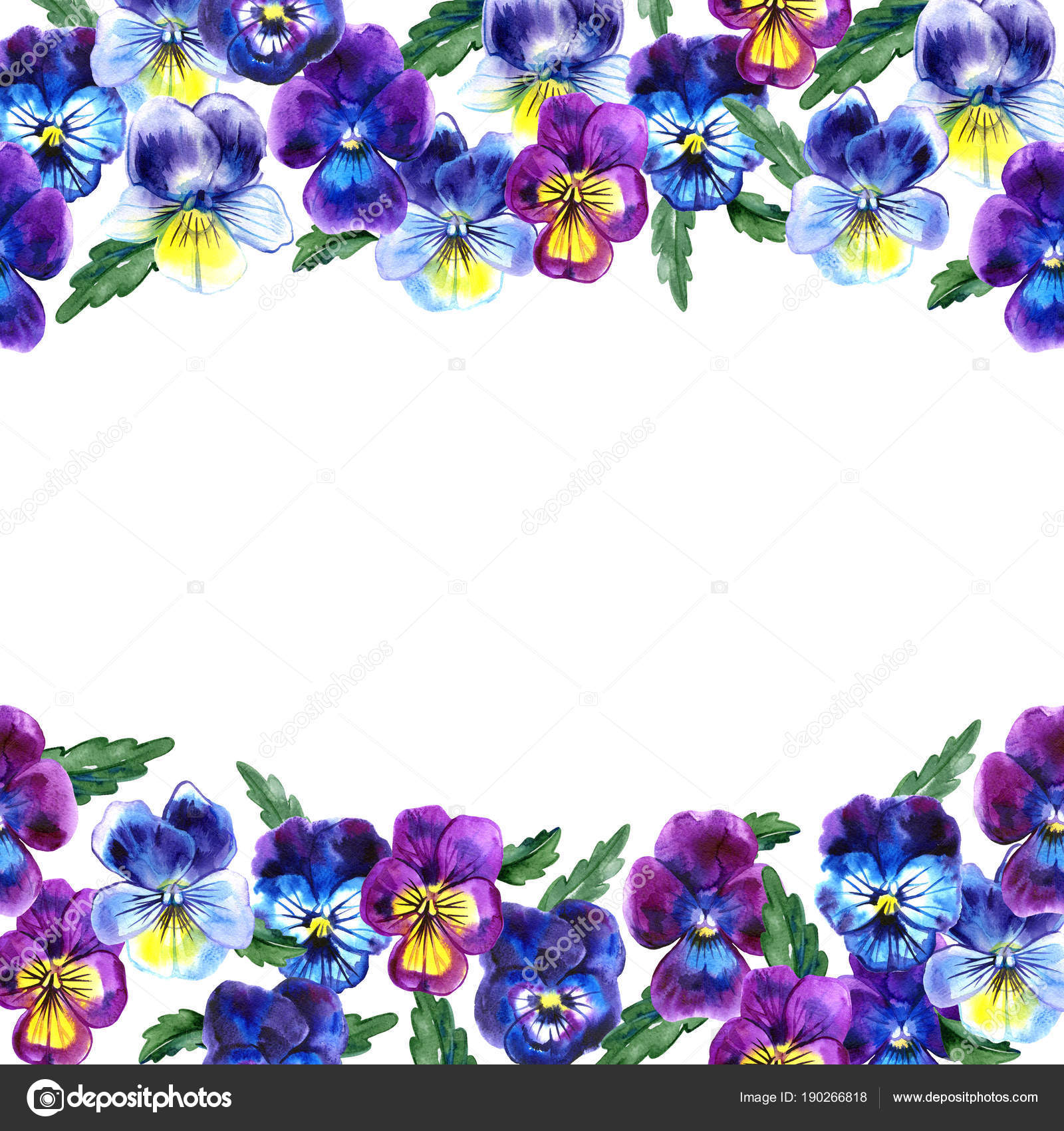 Boarder with hand drawn pansy flowers purple violet yellow with purple violet yellow with green leaves retro background with romantic flowersrfect frame for wedding and birthday cards invitations photo by izmirmasajfo