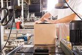 Photo Food production conveyor machine