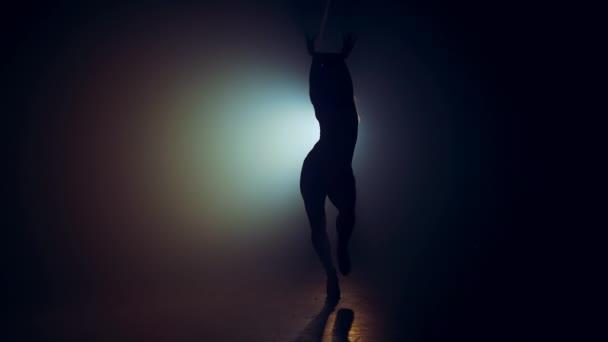 Ženská silueta v jasném reflektoru.Profesionální tanečnice se pohybuje na pódiu k hudbě.Plastová dívka se sportovní a svůdnou postavou.