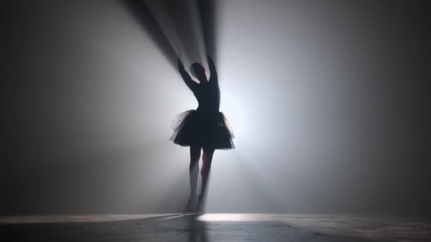 Solo performance by ballerina in tutu dress against backdrop of luminous neon spotlight in theater. Silhouette of woman in pointe shoes dancing classical movements. 4k.
