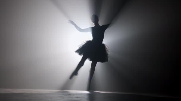 professionelle Ballerina tanzt Ballett im Scheinwerferlicht Rauch auf großer Bühne.