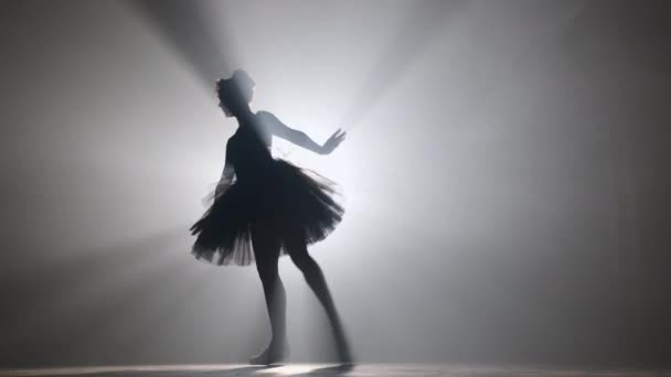 Professional ballerina dancing ballet in spotlights smoke on big stage.
