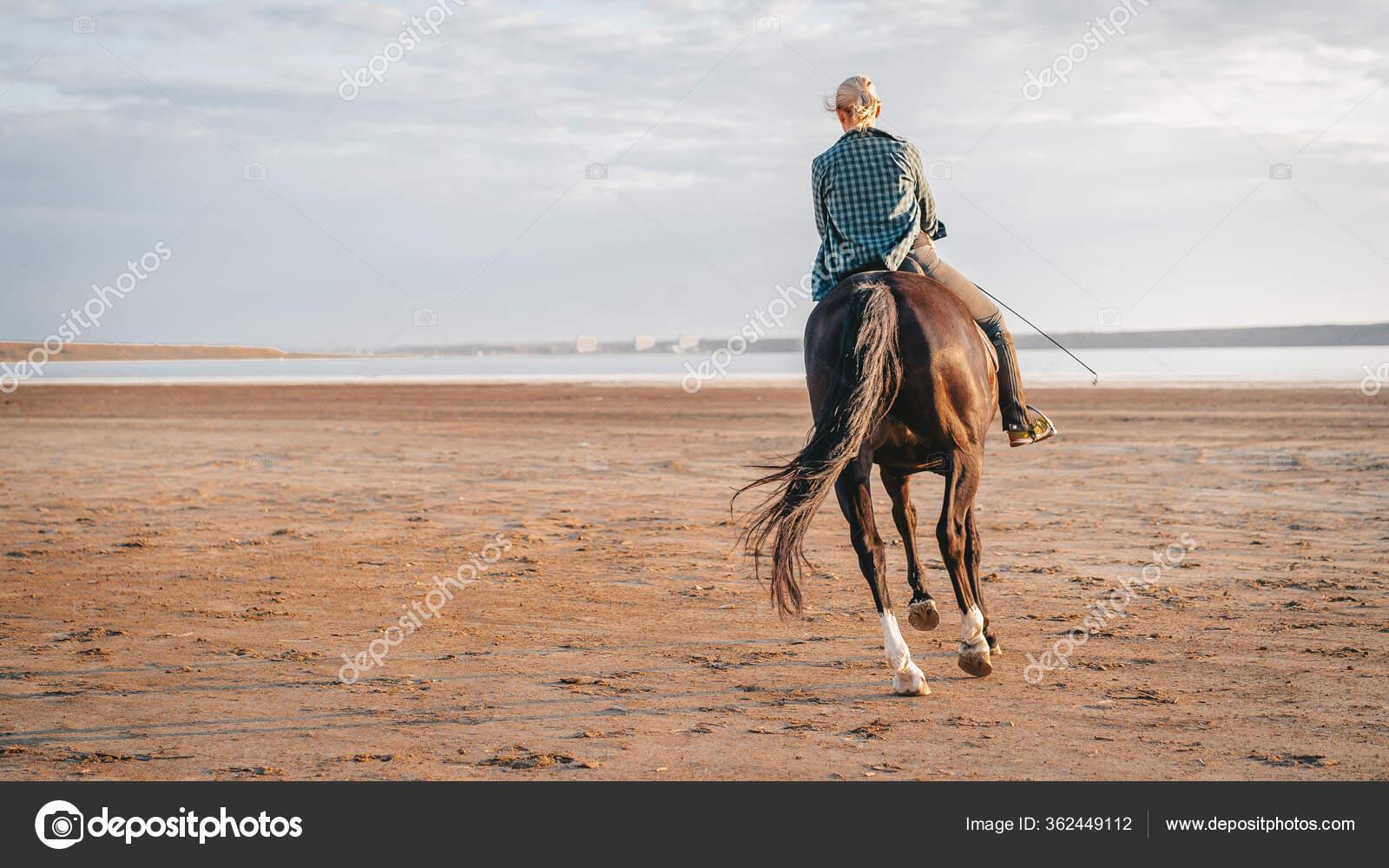 Woman Rides Horse On Beautiful Autumn Nature Landscape By River Or Lake Concept Of Farm Animals Training Horse Racing Stock Photo C Kohanova1991 362449112