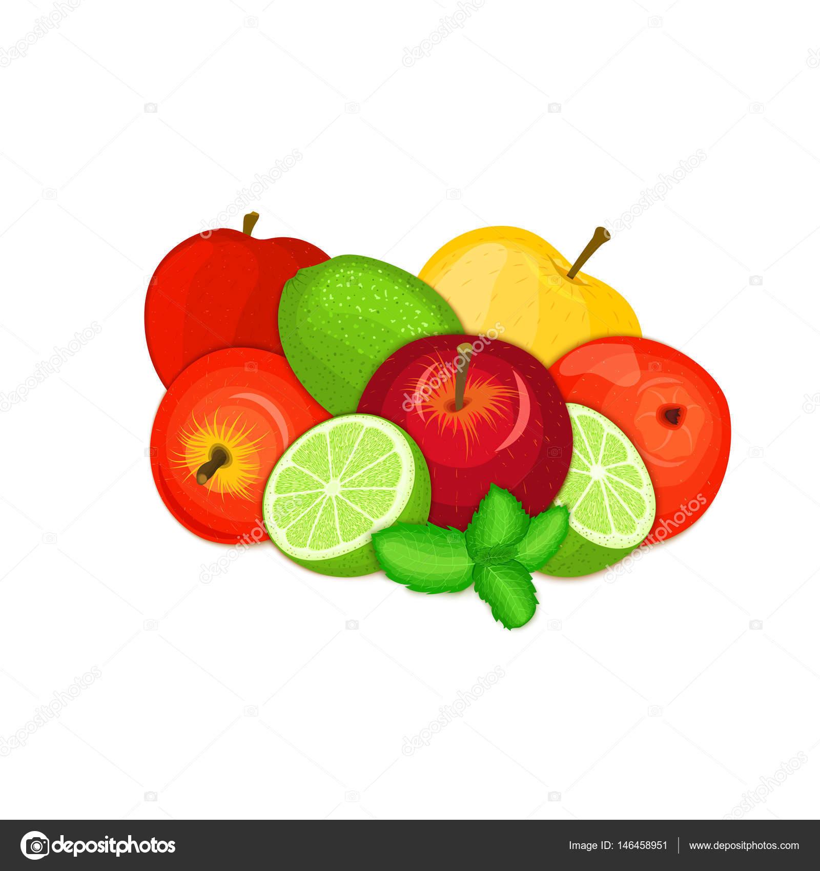 Composición vectorial de unas manzanas cítricos Lima y menta hojas ...