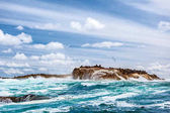 Fényképek Vadon élő fókák kolónia a stony island