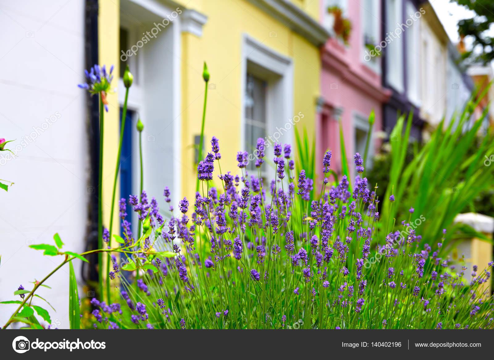 London Portobello Road Market Flowers In Uk Stock Photo Tono
