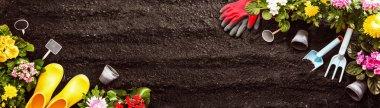 Gardening Tools on Soil Background