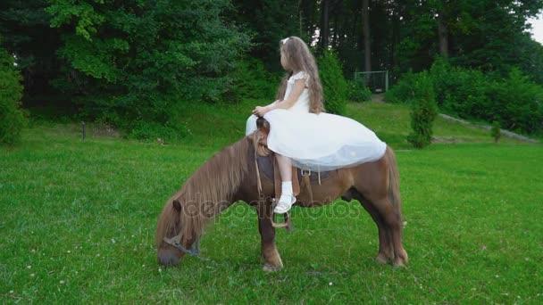 Kleines Mädchen Ist Ein Pony Reiten Stockvideo Zokov 168434926