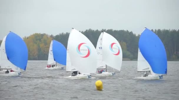Sailing Boats Navigating Fast During Regatta