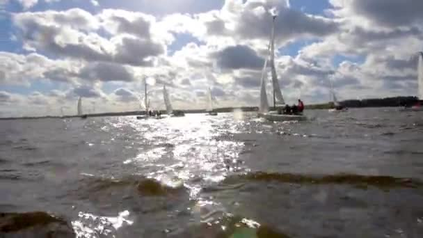 Sailboat Boat Regatta Yachting Racing Dinghy