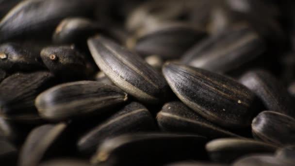 Makro pro slunečnicová semena. Bio slunečnicové semeno