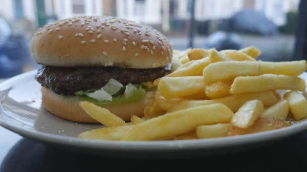 Rychlé občerstvení. Burger a hranolky