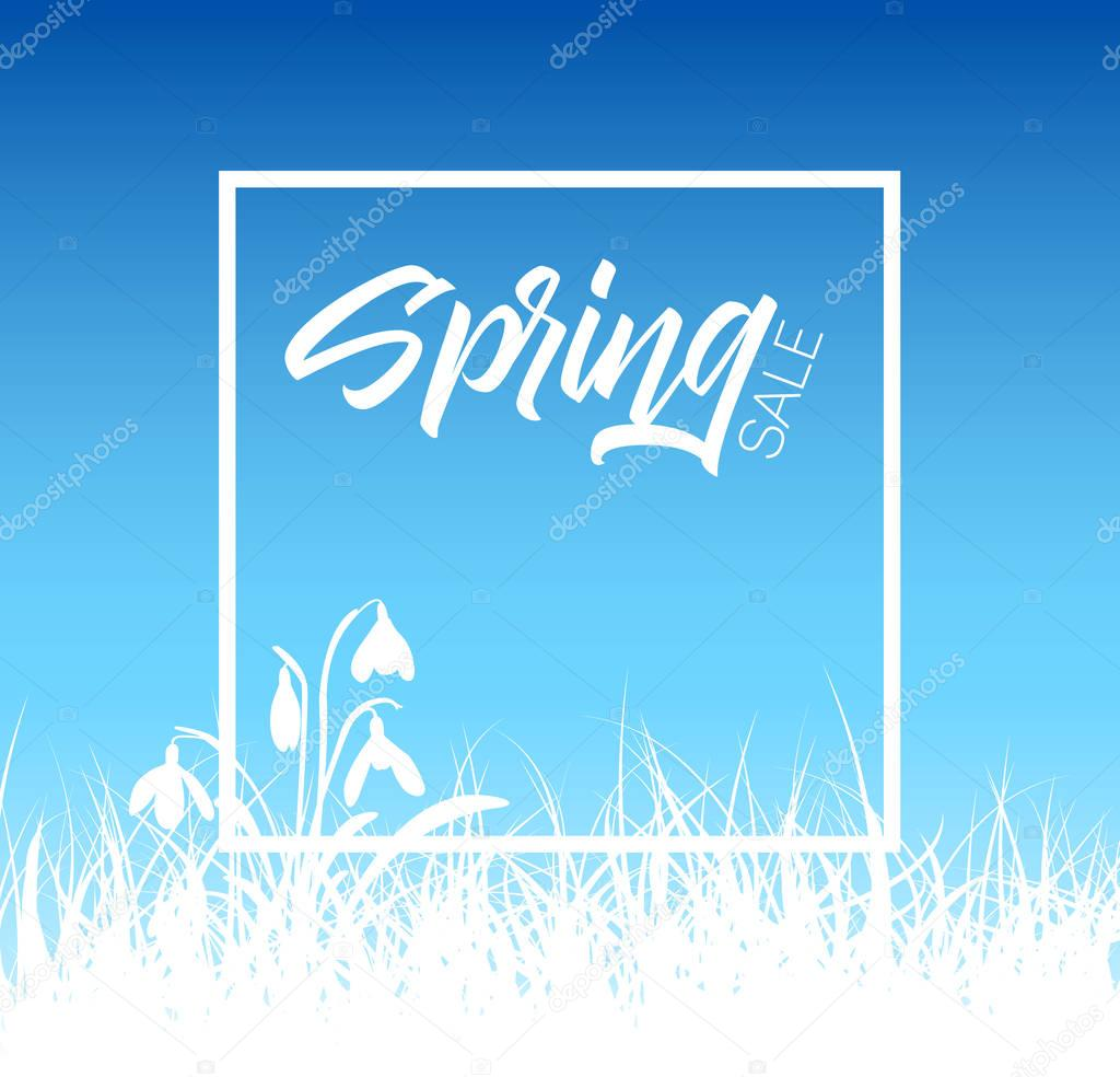 Spring  grass sale background