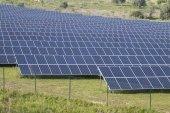 pole solárních panelů
