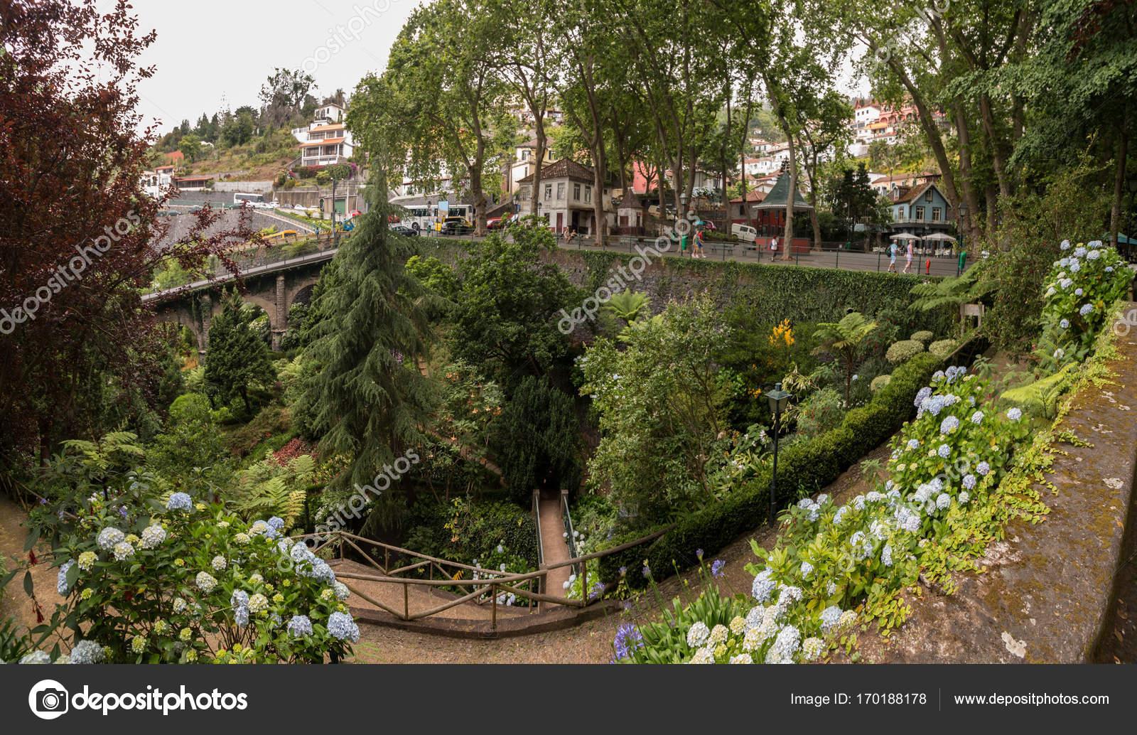 Tropical garden Monte Palace — Stock Photo © membio #170188178