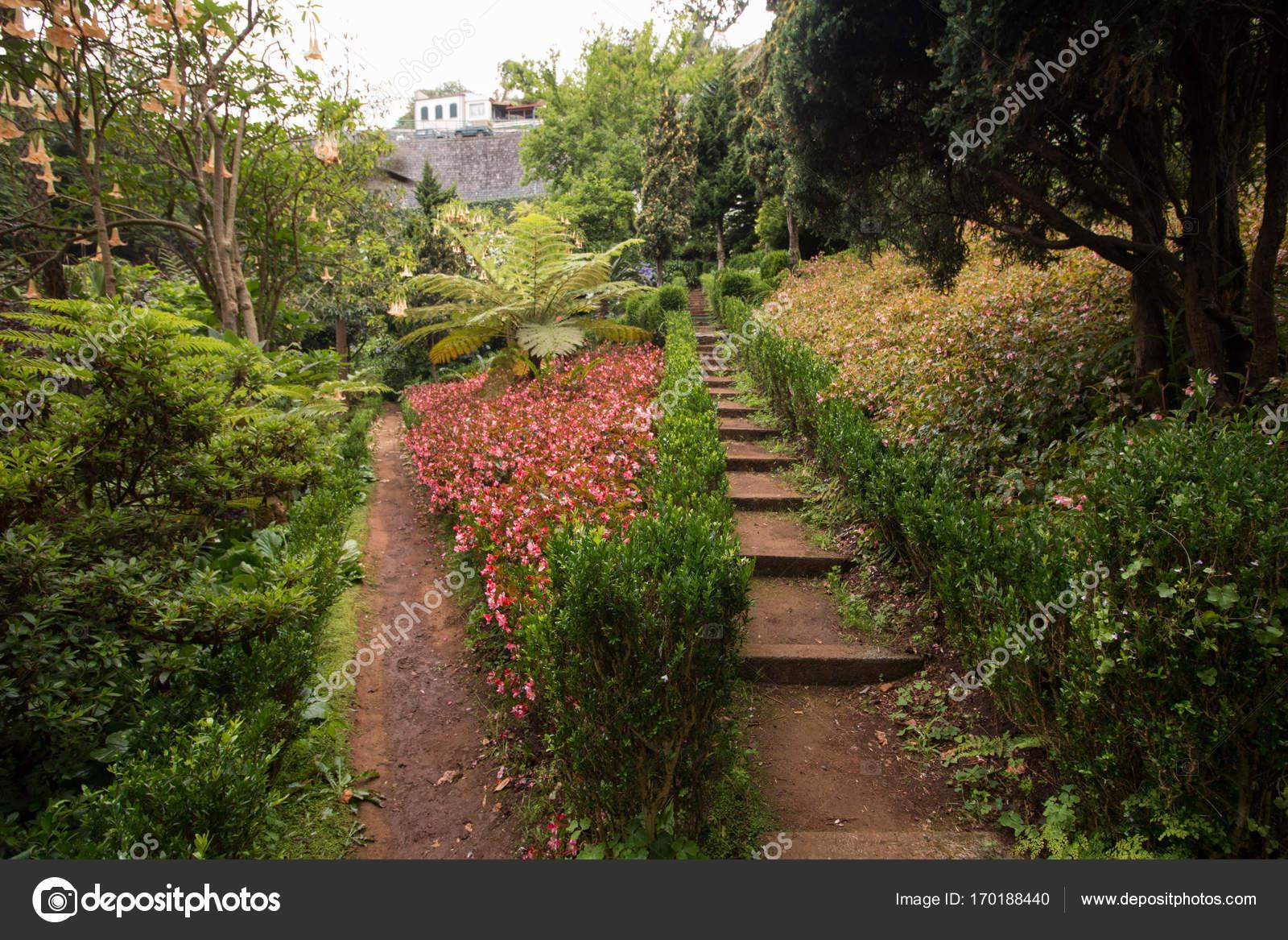 Tropical garden Monte Palace — Stock Photo © membio #170188440