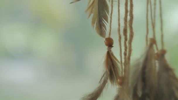 Indián Álomcsapda fúj a szél