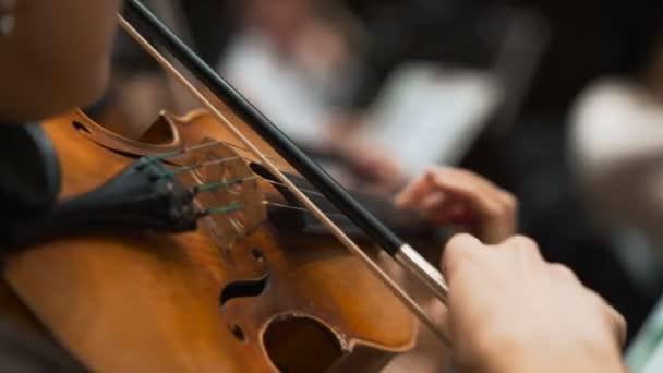 Nők hegedűjáték klasszikus koncerten. szimfonikus zenekari muzsikusok