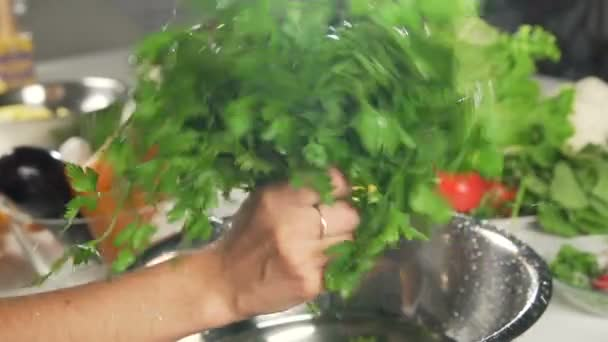 Fresh lettuce salad falls under water with a splash. Health food. slow motion