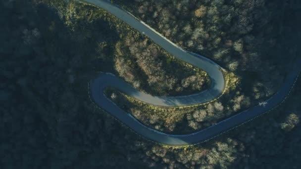 Luftaufnahme der Kurve leere Fahrbahn im grünen Wald