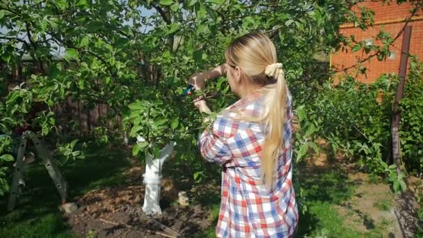 Slow motion video of young woman cutting branches from apple tree at orchard