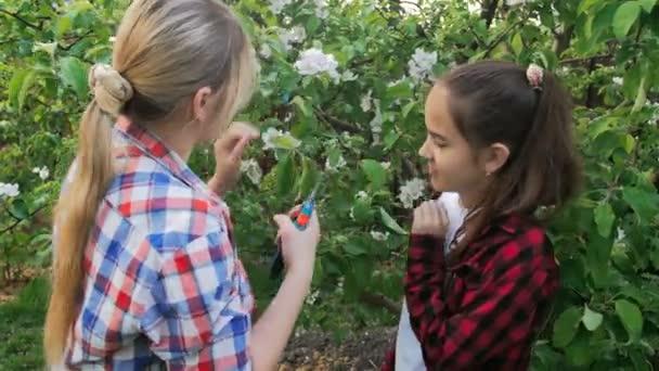 4 k videa mladé ženy s dospívající dcerou prořezávání jabloní v sadech