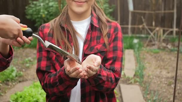 Konzeptionelle Schuss von Teamarbeit. Menschen die in Boden und Sämling in Händen der Mädchen im Garten