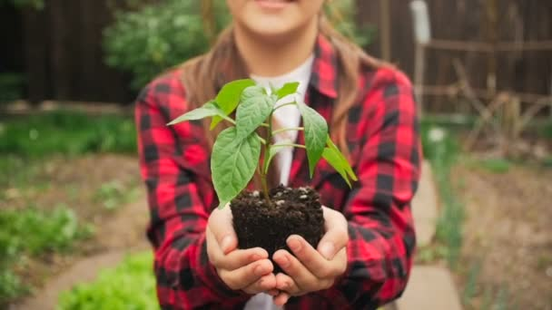 Closeup shot of smiling young woman holding handful of soil and seedling at backyard garden