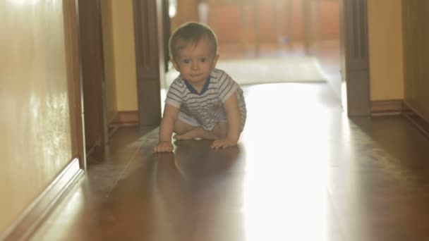 Cute toddler boy crawling on wooden floor at house