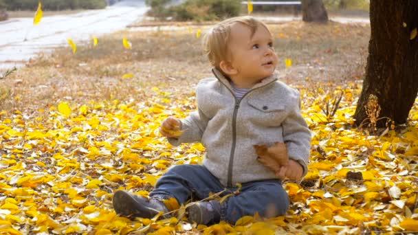 Zeitlupenaufnahmen von entzückenden kleinen Jungen, die auf dem Boden im Herbstpark spielen